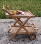 Trolley and Tray